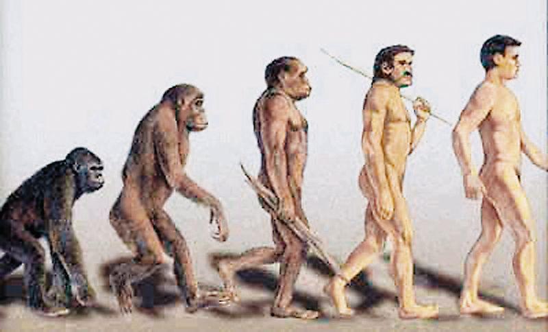 Εισαγωγή στα ανθρώπινα ένστικτα