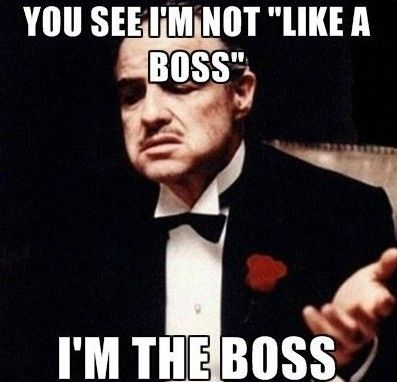 you-see-im-not-like-a-boss-i-am-the-boss
